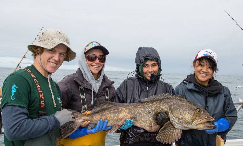 Guided Saltwater Charters